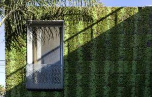 Bricault Design (Канада). Расти и зеленеть