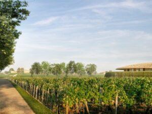 Foster + Partners построит куполообразную винодельню в Бордо