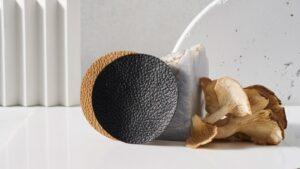 Глобальные компании инвестируют в новую органическую «кожу»